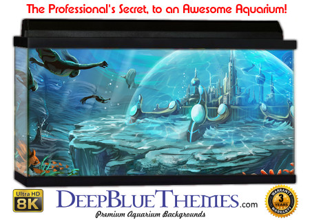 Buy Aquarium Background Awesome Atlantis Aquarium Background