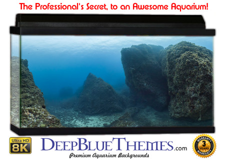 Buy Aquarium Background Awesome Boulders Aquarium Background