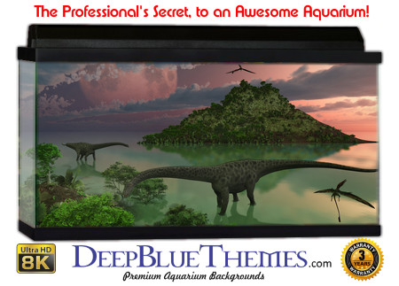 Buy Aquarium Background Awesome Dino Aquarium Background