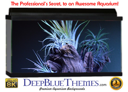 Buy Aquarium Background Awesome Driftwood Aquarium Background
