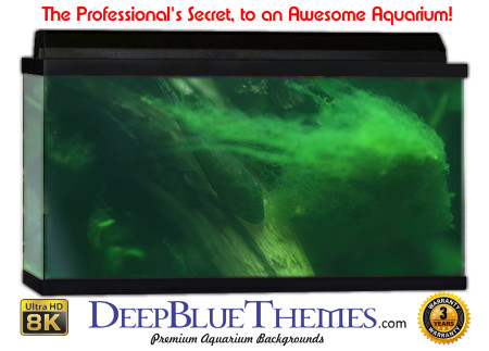 Buy Aquarium Background Awesome Greenblur Aquarium Background
