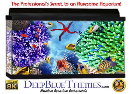 Buy Aquarium Background Awesome Ground Aquarium Background
