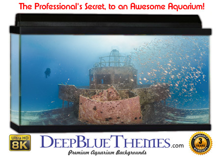 Buy Aquarium Background Awesome Helm Aquarium Background