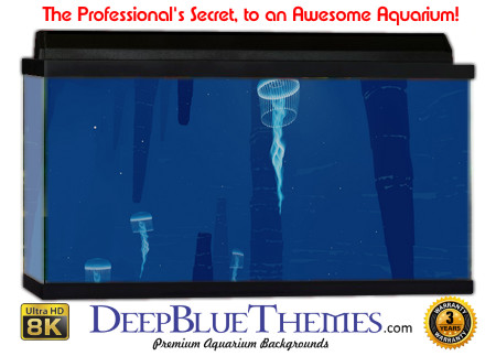 Buy Aquarium Background Awesome Jelly Aquarium Background