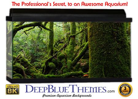 Buy Aquarium Background Awesome Moss Aquarium Background