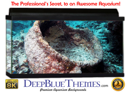 Buy Aquarium Background Awesome Pot Aquarium Background