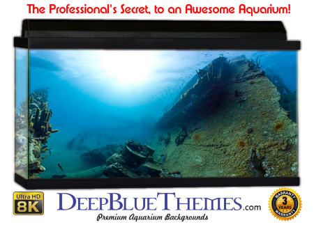 Buy Aquarium Background Awesome Ridge Aquarium Background