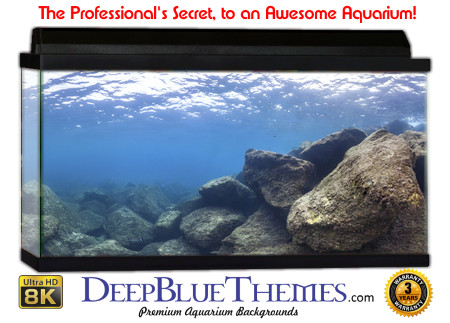 Buy Aquarium Background Awesome Rock Aquarium Background