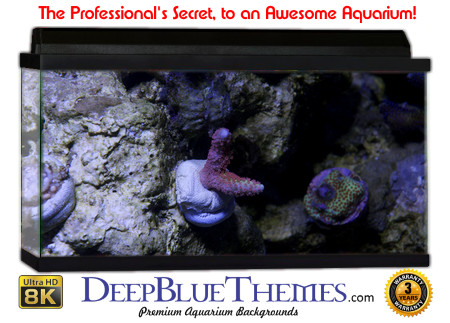 Buy Aquarium Background Awesome Rocklife Aquarium Background