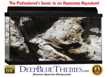 Buy Aquarium Background Awesome Rockwall Aquarium Background