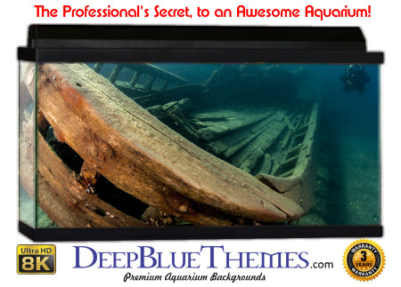 Buy Aquarium Background Awesome Shipwreck Aquarium Background