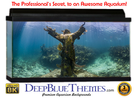 Buy Aquarium Background Awesome Statue Aquarium Background