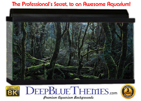 Buy Aquarium Background Awesome Trees Aquarium Background