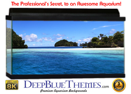 Buy Aquarium Background Beach Blue Aquarium Background