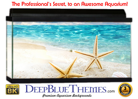 Buy Aquarium Background Beach Star Aquarium Background