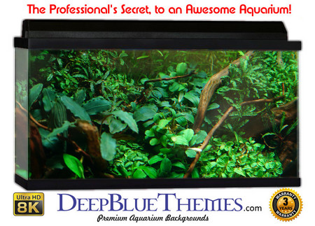 Buy Aquarium Background Classic Greens Aquarium Background