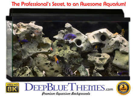 Buy Aquarium Background Classic Rock Aquarium Background