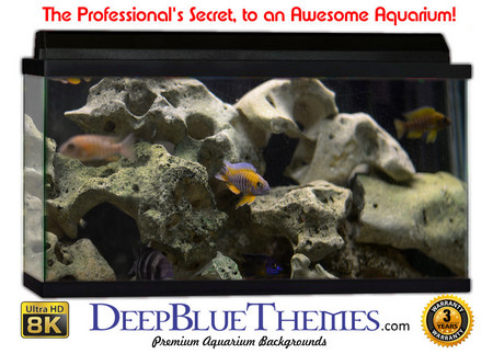 Buy Aquarium Background Classic Stone Aquarium Background