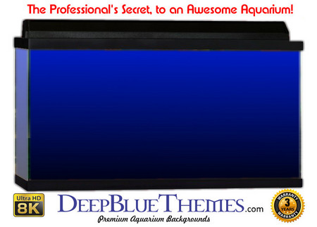 Buy Aquarium Background Colors Blue Ftbb Aquarium Background