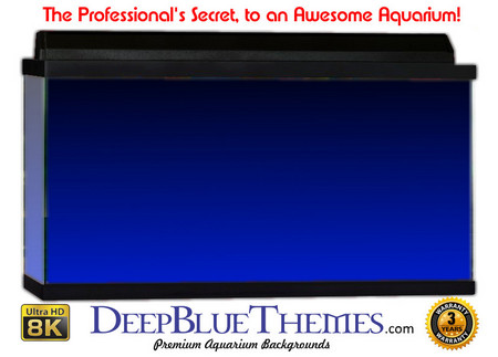 Buy Aquarium Background Colors Blue Ftbt Aquarium Background