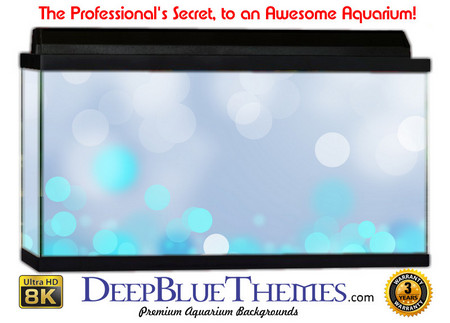 Buy Aquarium Background Colors Bluelights Aquarium Background