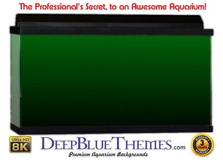 Buy Aquarium Background Colors Green Ftbb Aquarium Background