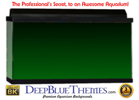 Buy Aquarium Background Colors Green Ftbt Aquarium Background