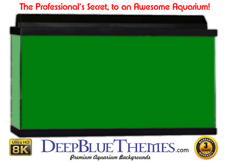 Buy Aquarium Background Colors Green Aquarium Background