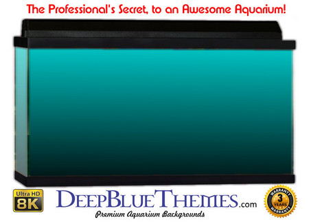 Buy Aquarium Background Colors Lightblue Ftbb Aquarium Background