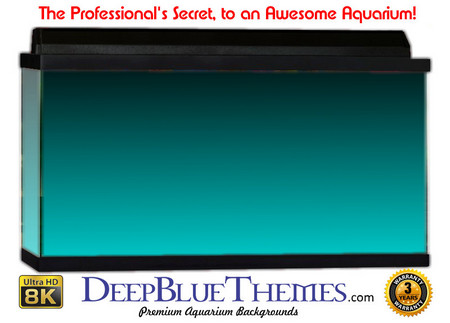 Buy Aquarium Background Colors Lightblue Ftbt Aquarium Background