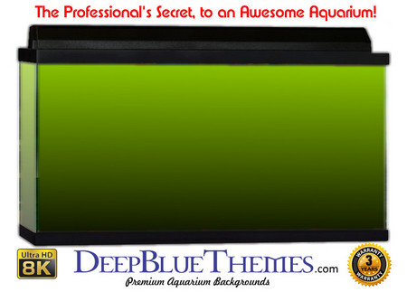 Buy Aquarium Background Colors Lightgreen Ftbb Aquarium Background