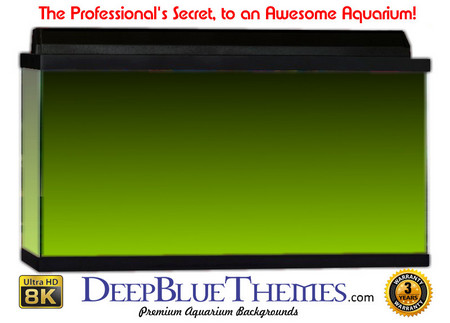Buy Aquarium Background Colors Lightgreen Ftbt Aquarium Background