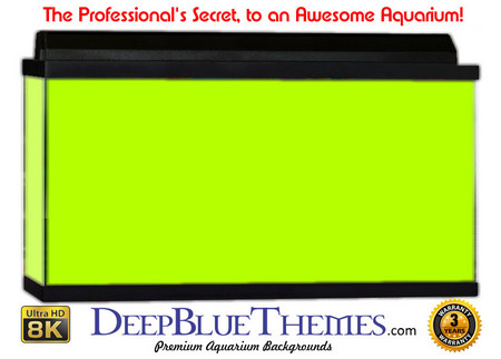 Buy Aquarium Background Colors Lightgreen Aquarium Background