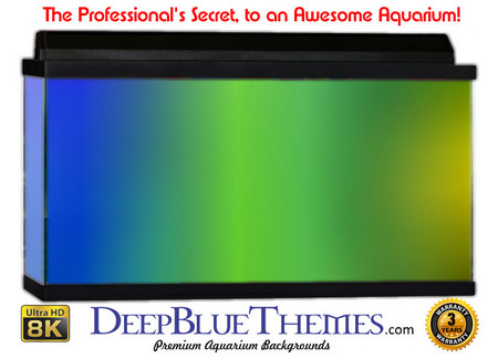 Buy Aquarium Background Colors Many Aquarium Background