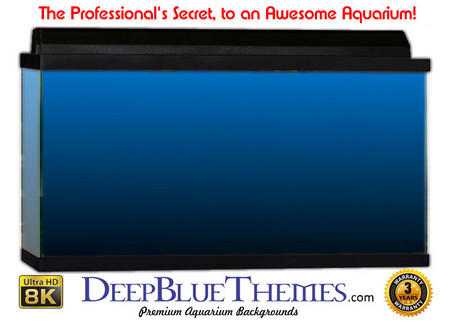 Buy Aquarium Background Colors Mediumblue Ftbb Aquarium Background