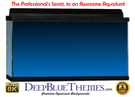 Buy Aquarium Background Colors Mediumblue Ftbt Aquarium Background