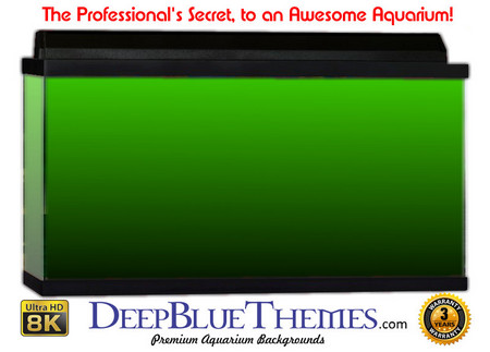 Buy Aquarium Background Colors Mediumgreen Ftbb Aquarium Background
