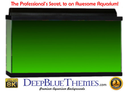 Buy Aquarium Background Colors Mediumgreen Ftbt Aquarium Background