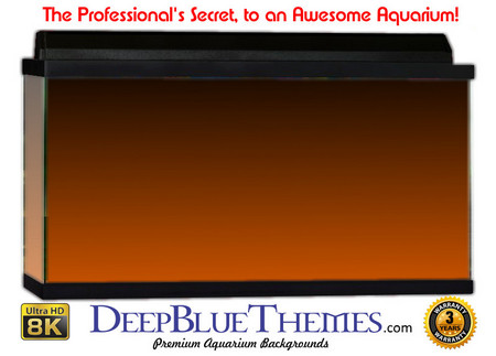 Buy Aquarium Background Colors Orange Ftbt Aquarium Background