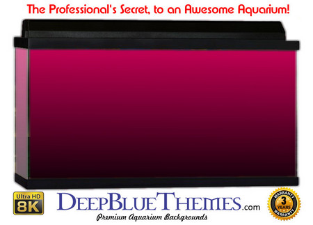 Buy Aquarium Background Colors Pink Ftbb Aquarium Background