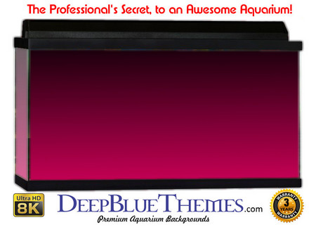 Buy Aquarium Background Colors Pink Ftbt Aquarium Background