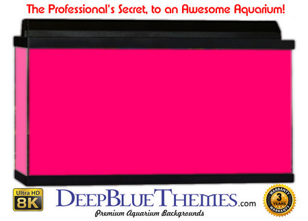 Buy Aquarium Background Colors Pink Aquarium Background