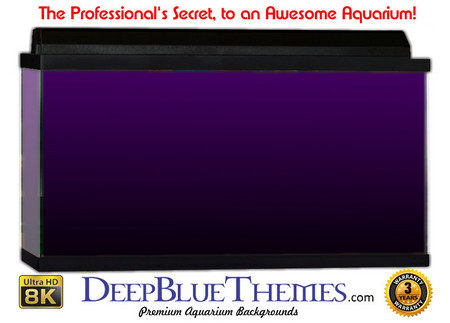 Buy Aquarium Background Colors Purple Ftbb Aquarium Background