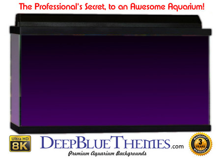 Buy Aquarium Background Colors Purple Ftbt Aquarium Background