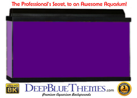 Buy Aquarium Background Colors Purple Aquarium Background