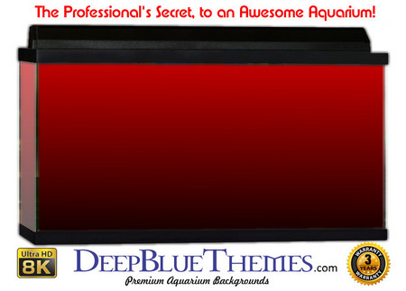 Buy Aquarium Background Colors Red Ftbb Aquarium Background