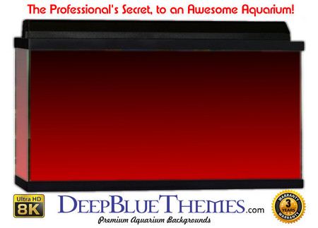 Buy Aquarium Background Colors Red Ftbt Aquarium Background