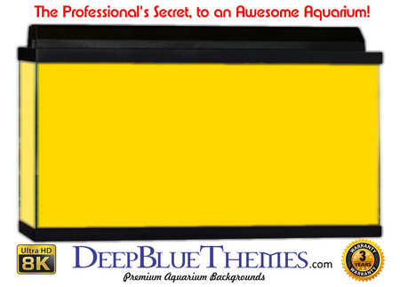 Buy Aquarium Background Colors Yellow Aquarium Background