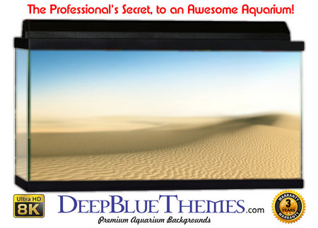 Buy Aquarium Background Desert Clean Aquarium Background