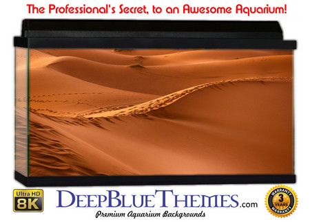 Buy Aquarium Background Desert Edge Aquarium Background